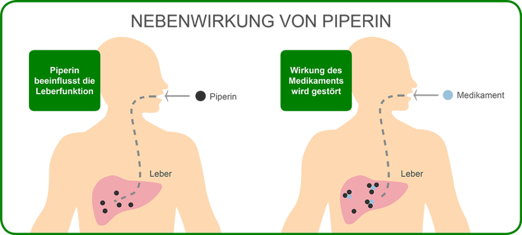 Nebenwirkungen von Piperin